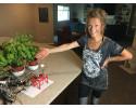 Raspberry Pi based garden monitoring system supplies five sensors